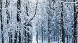 Winterferien für Familien